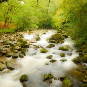 Walks, waterfalls and wildlife