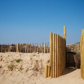 Gardens, dunes and beach