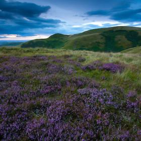 Escape to the river in the Scottish Borders