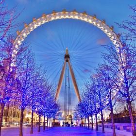 Lights, sights, bars and Michelin stars