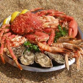 Catch a crab, sink an oyster