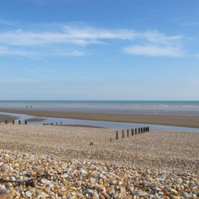 Woodland, wetlands and Winchelsea Beach