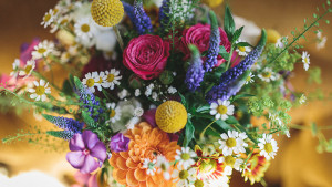 tregulland-wedding-8-800x450