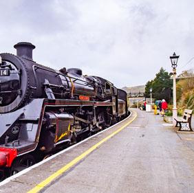 Dartmouth Steam Railway.