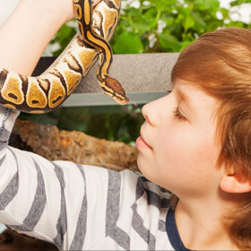 Boy with pet snake.