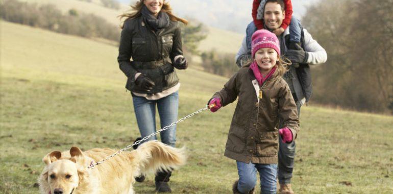 Family walking their dog.